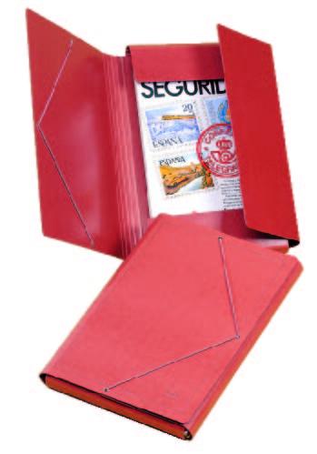 Producto: Carpeta Cartón Compacto Nº 10 Esmaltado Alto Brillo Cuero